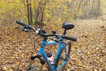 B-twin rockrider / Short ride in the forest #autumn