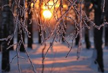 Loveable sunset