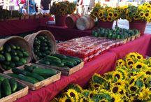 Farmers Markets / Worden Farm Farmers Markets in St. Petersburg and Sarasota, Florida