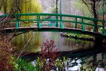 Jardines / Naturaleza