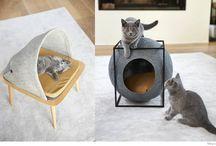 Design Product Ideas