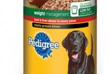 Pet Food Recalls