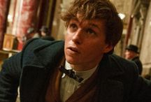 Fantastic Beast and Were To Find Them