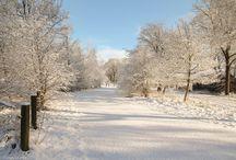 Winter / Dina Germs fotografie