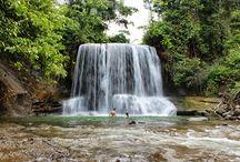 Tangkahan,langkat-North Sumatra