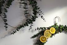 Deco végétale