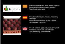Fruitaito SAT 9904 / Cooperativa de Fruita d'Aitona
