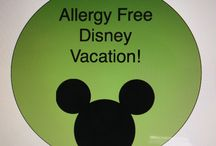 Disney Parks Travel Tips / The best traveling tips for your next Disney trip!