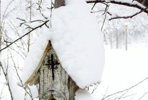 Winter / places and things that make the Winter season beautiful. / by Patty Russes