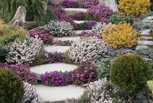Zahradka a Altanok / Lebo aj mala predzahradka sa pocita :-)