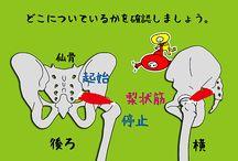 ストレッチ 股関節のインナーマッスル