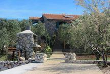 Robinsonský turismus / Chorvatsko - vzdálené chaty - robinsonáda - jsou skvělou volbou pro všechny, kdo chtějí trávit dovolenou v nedotčené přírodě poblíž moře. Pag, Pasman ...