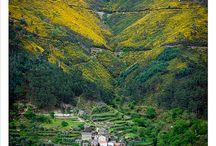 Portugal -  lindo
