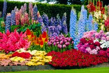 Beautiful Gardens / Take a deep breath and browse through these gardens.