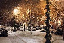 Winter / by Connie McCaul Melhuse