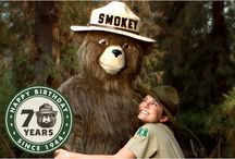 Smokey Bear / by Alison Shaffer