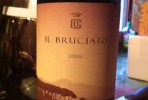 Italian wine (reds)