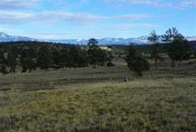 Lot 6 Shooting Star, Pagosa Springs, CO 81147 / Once in a lifetime opportunity to purchase this parcel located in the exclusive Timber Ridge equestrian subdivision. This Lot 6 has amazing eastern and northern ( Pagosa Peak) views. The only 35 acre parcels -Close to town, all paved roads and underground utilities, close to grocery store, hospital etc.