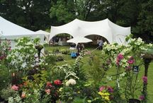 The English Country Garden Festival at Coombe Trenchard