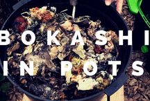 All about Bokashi Compost