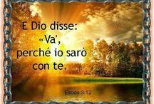 nel nome della fede
