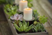 Flores de centro de mesas