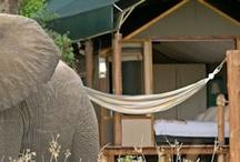 Botswana Lodges