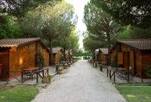 Alloggiare in Umbria / Il cammino di Francesco è disseminato di zone di accoglienza e comodi alberghi.