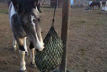 DIY Feeder's / Hay net holders, posts, hay feeders, covers, etc...