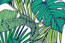 BuJo Jungle