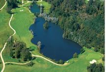 Parcours de golfs / Découvrez les nombreux parcours de Golf des Yvelines!