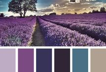 color Inspiration: Purple