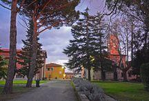 Osteria Agricola Toscana Pitti&Friends / L'Osteria Agricola Toscana Pitti&Friends è un ristorante di cucina toscana che realizza il chilometro zero perfetto. Si trova all'interno della Tenuta Torre a Cenaia, nel cuore del suo borgo antico.