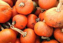 Pumpkin inspo