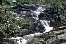 """Outdoors in North Georgia - Ellijay Cabin Rentals / There are an endless amount of outdoor activities in the North Georgia area. This board will tell you all about upcoming activities and """"must-sees"""" while visiting the area."""