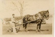 Jewish Farmers in America