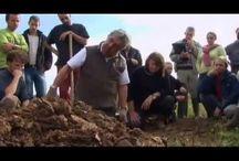 Agronomie, jardinage, permaculture