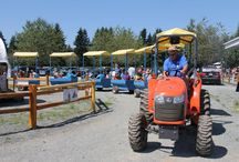 Family Fun / fun things to do at Krause Berry Farms
