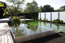 Teichmeister Pool