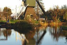 Windmills    / by Cora Van de Vlekkert