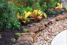 Zahrady-solitéry atd...