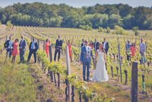 Wedding in the Vineyard