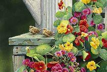 Garden & Countryside art / Art and pictures that make me go ahhhhhhh.