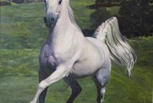 Horse Art by Dari / My paintings of beautiful, wild and free horses in their natural element and with their human counterparts. #HorseLove #OilOnCanvas #Painting #WildHorse #Art #HumanistArt