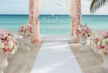 weddimg lay out