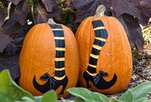 Boo! - Halloween / by Lynn Hague