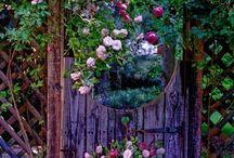 """Green thummin' and backyard bummin"""" / A gardener's dream / by Trisha C"""