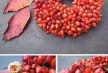 Herbst/Fall