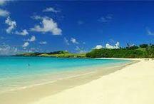 calaguas island..