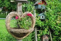 Birdhouses and Birdcages